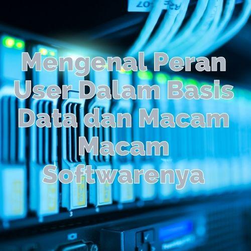 Mengenal Peran-User Basis Data dan Macam Macam Softwarenya